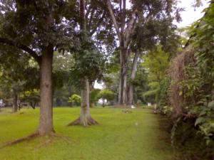 Taman Sipil